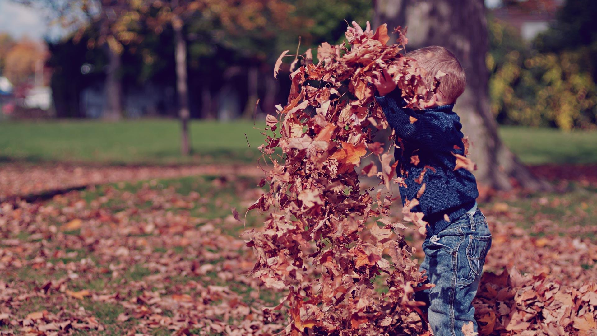 Herbsturlaub Rennsteig Wichtshausen